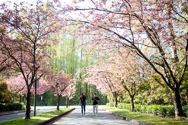 Walking at the Capilano University Residence on April 26, 2018.